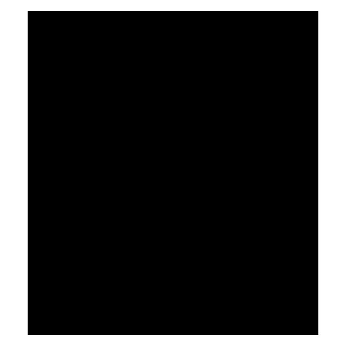 Logo Colas Bois par Fox Webdesign